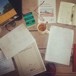 A day at home studying Russian