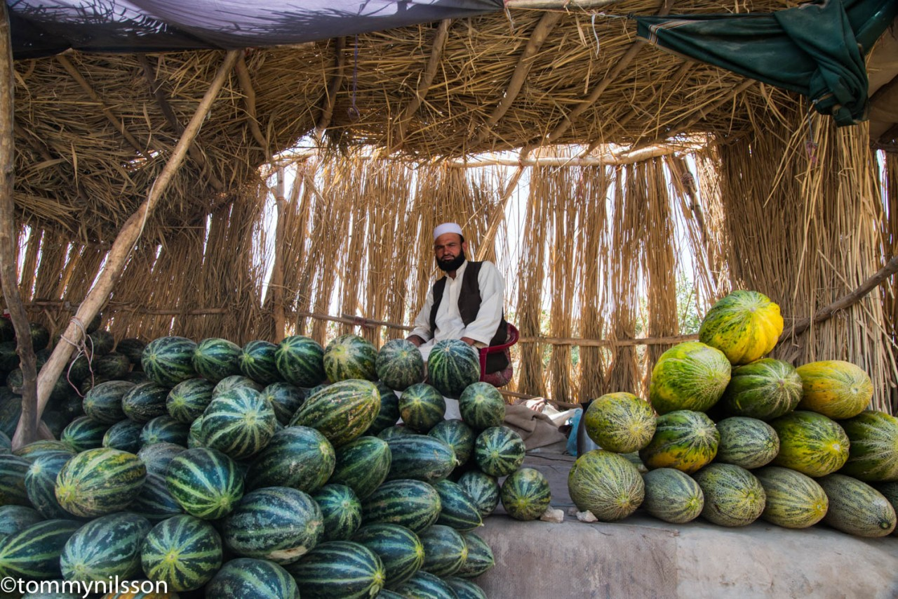 melon-seller-at-tashkurgan-east-of-mazar-e-sharif