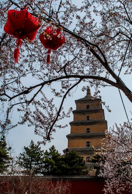 411 Big Goose Pagoda, Xian